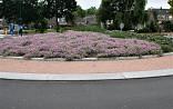 Rotonde met Geranium riv. Mavis Simpson