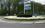 Rotonde met witte tulpen