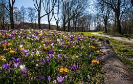 Waldervaart park Schagen
